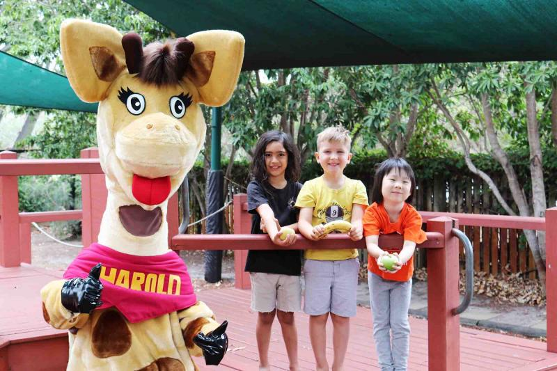 Life Education Queensland Healthy Harold Early Learning Nutrition Children In Playground