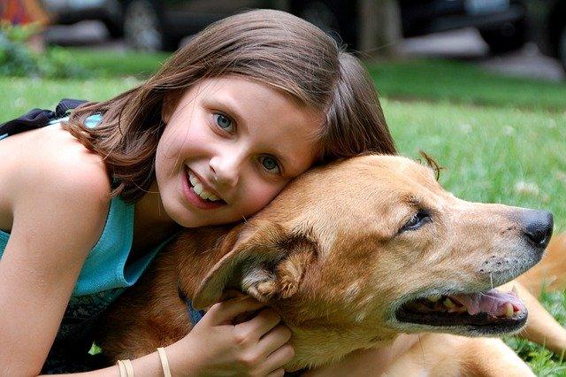 Life Education Queensland Healthy Harold Mental Health Children Child Kids Resilience Mindfulness