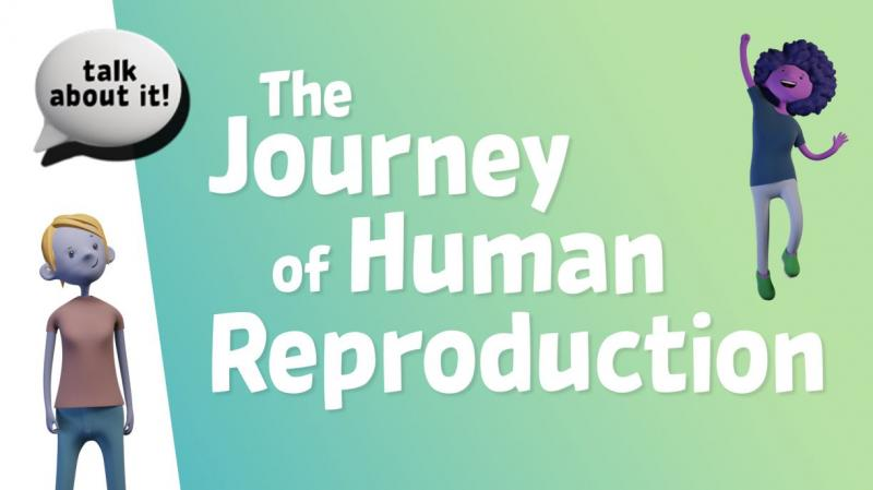 Life Education Queensland Healthy Harold Sexual Health Talk About It Journey Of Human Reproduction