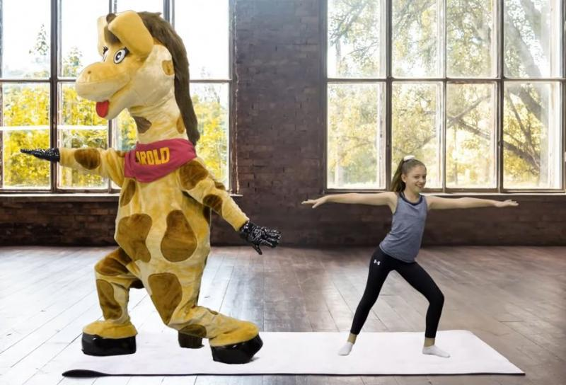 Life Education Queensland Healthy Harold Tips Exercise Physical Activity Yoga Wellness