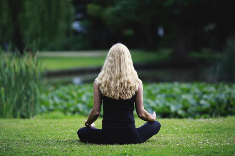 Life Education Queensland Healthy Harold Mindfulness Meditation Resilience Mental Health