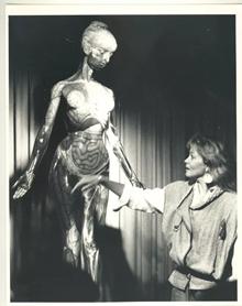 Life Education Queensland Tam Transparent Anatomical Mannequin