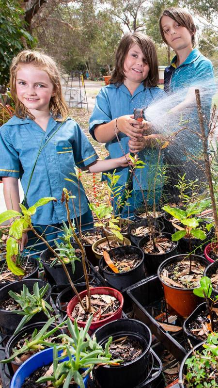 Life Education Queensland Podcast Nutrition Growing Own Vegetables Portrait