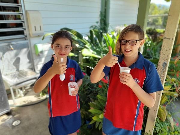 Life Education Qld Healthy Harold Healthy Eats Fruity Twist Smoothie Recipe