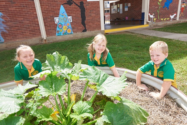 Life Education Qld Healthy Harold Proserpine Students