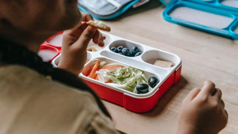 Life Education Queensland Nutrition