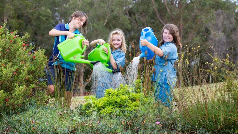 Life Education Sunshine Coast Daily 2