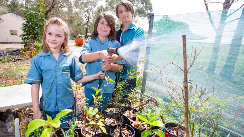 Life Education Sunshine Coast Daily